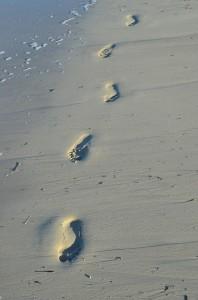 feet-67007_640